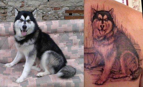 15 best husky tattoo designs sonderlives. Black Bedroom Furniture Sets. Home Design Ideas