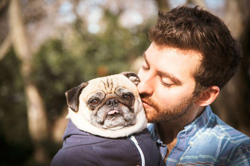 15 Reasons Why Pugs Are Man's Best Friend