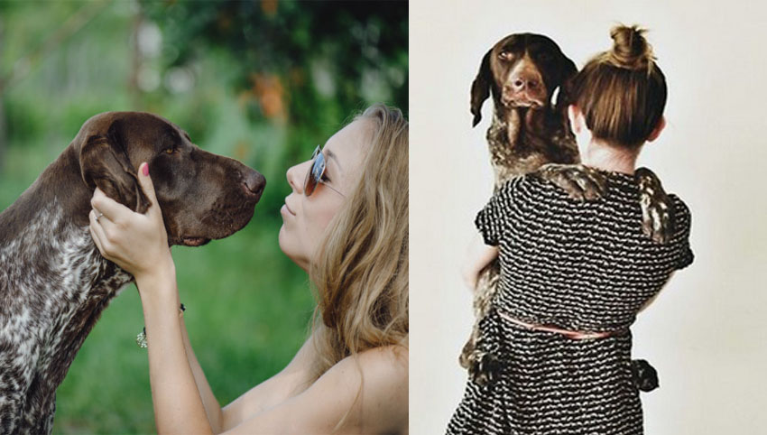 9 Weird Things We Do As German Shorthaired Pointer Parents