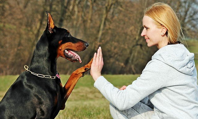 11 Overwhelming Moments Of Love Only Doberman Can Understand