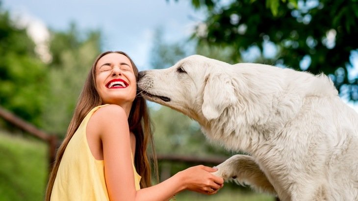 9 Weird Things We Do As Great Pyrenees Parents